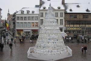 kerstboom hasselt