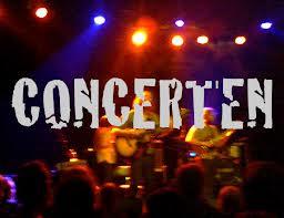 concertjaar 2013