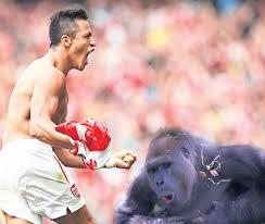 voetballers vs apen